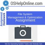 File System Management & Optimization